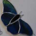 Butterfly Double Wing